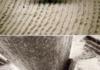 Vinyl Record Up Close