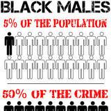 Black Males - 5% population; 50% crime