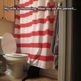 My Cat the Pervert!!!