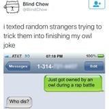 Owl joke