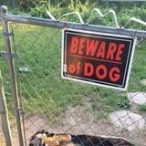 Danger doggo